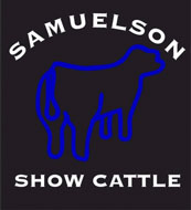 Showstockplanet com Online Sales :: Sale Results